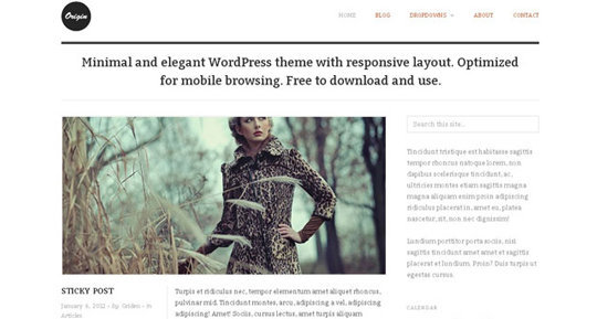 Wordpress responsive theme 11