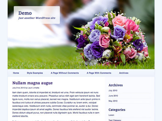 wordpress-responsive-theme 21