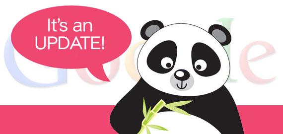 Google panda update 24