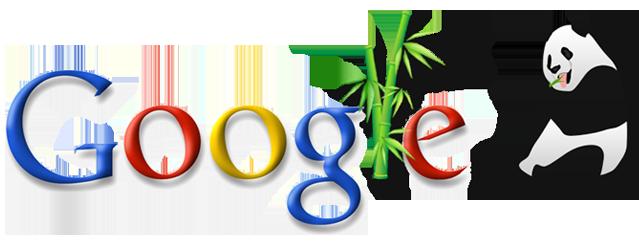 google panda la gi